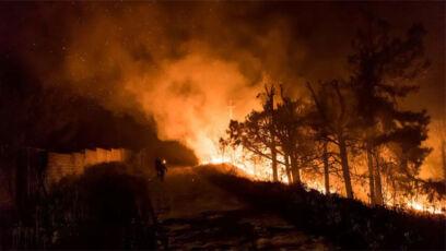 آتش سوزی در جنگل های ایران